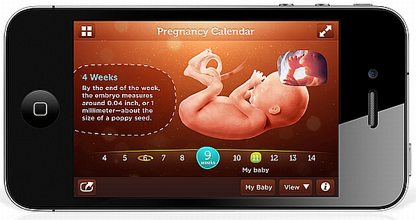 Pampers hello baby pregnancy calendar